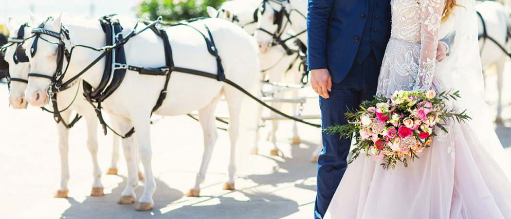 Meredith + Chad : Cinderella Wedding at Disney's Grand Floridian Resort Part I